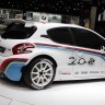 Photo Peugeot 208 R5 (Paris 2012)